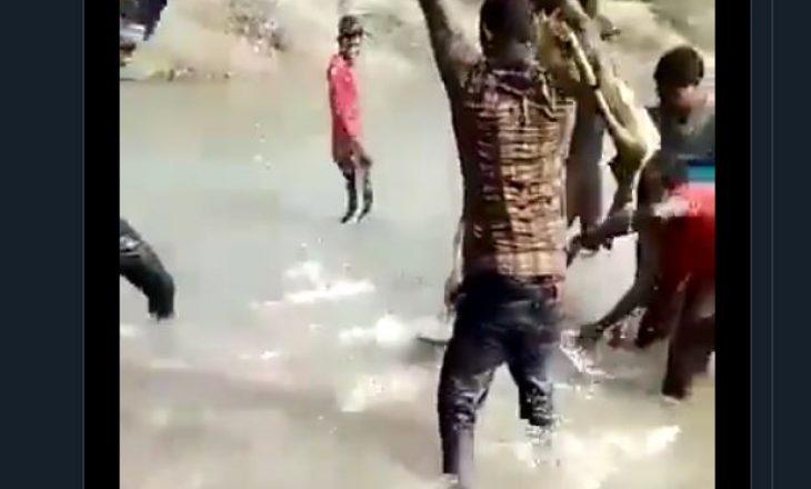 Rrahën për vdekje një delfin – arrestohen tre persona