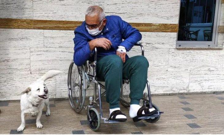 Qeni pret për ditë të tëra para spitalit ku po trajtohej i zoti i tij