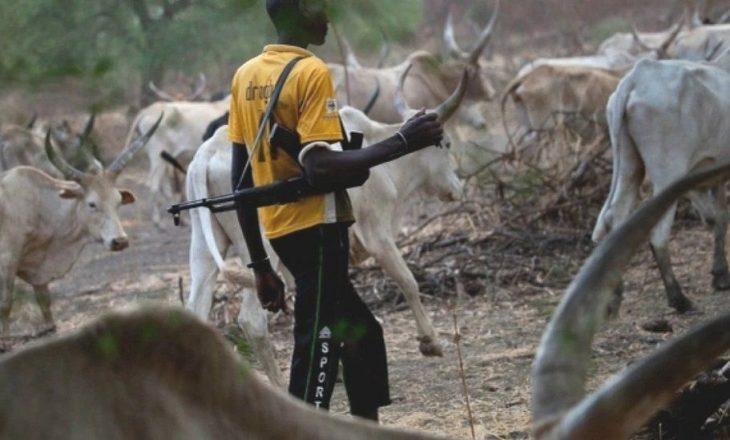 Çad: Të paktën 35 persona mbeten të vrarë nga përplasjet mes fermerëve