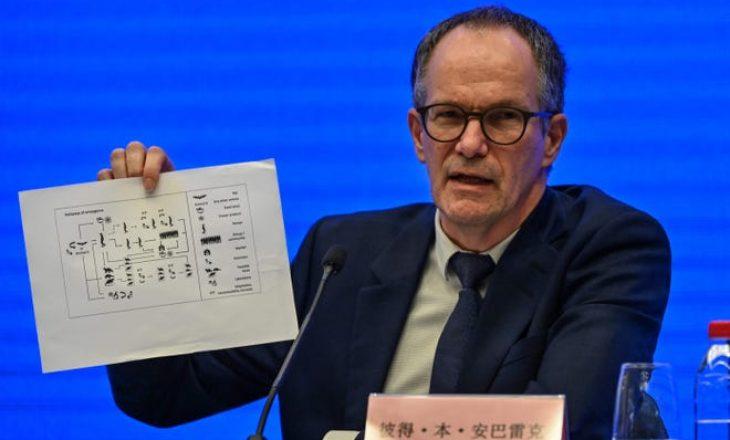 Nuk ka prova të mjaftueshme që COVID-19 është përhapur para dhejtorit 2019 në Wuhan, sipas OBSH-së