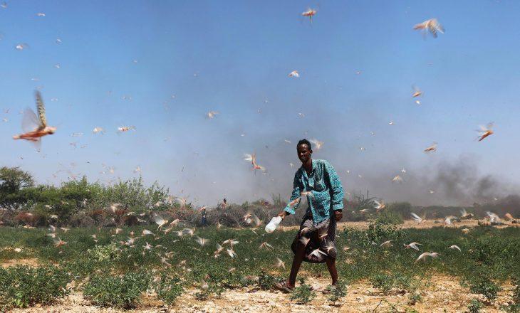 Nga pushtimi i karkalecave, Somalia ka shpallur gjendjen e jashtëzakonshme