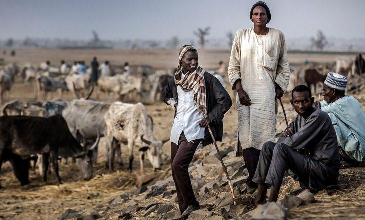 Nga përleshjet mes dy grupeve etnike në Nigeri, së paku 15 persona kanë humbur jetën