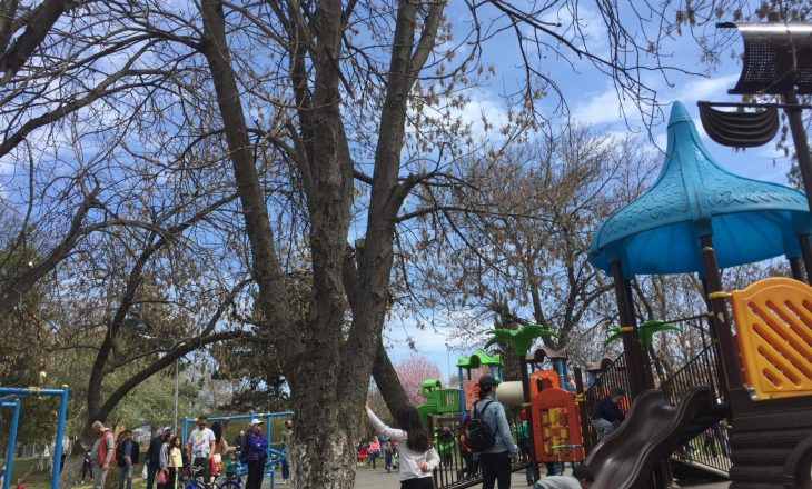 Qytetarët nuk respektojnë masat anti-COVID, grumbullohen në Parkun e Qytetit