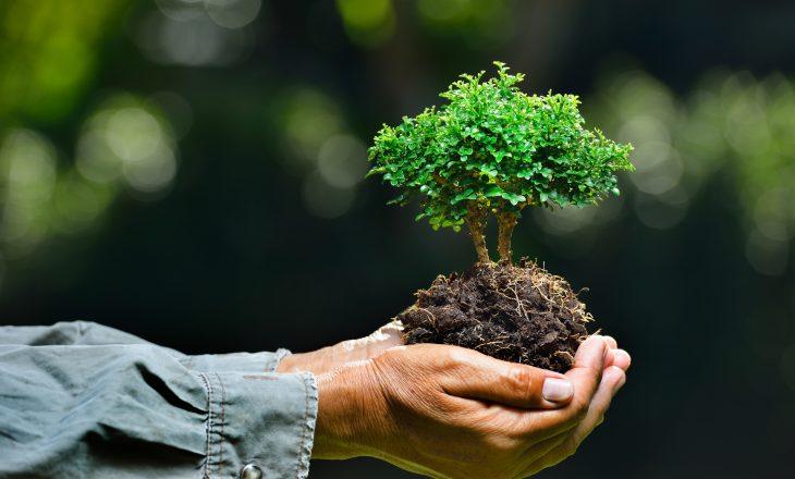 Sot Dita Ndërkombëtare e Mjedisit